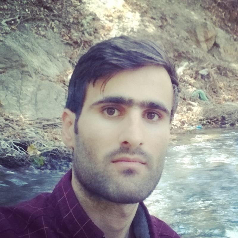 saeed karimi