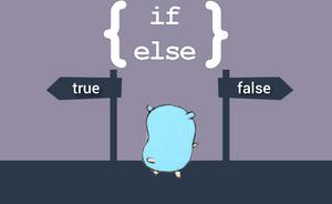 6.آموزش GO با مثال(دستور if/else)