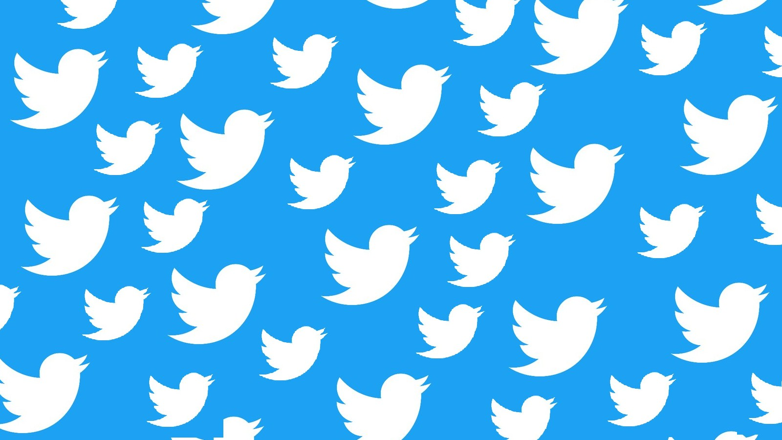 در طول روز چه تعداد توییت تو توییتر منتشر کنیم؟