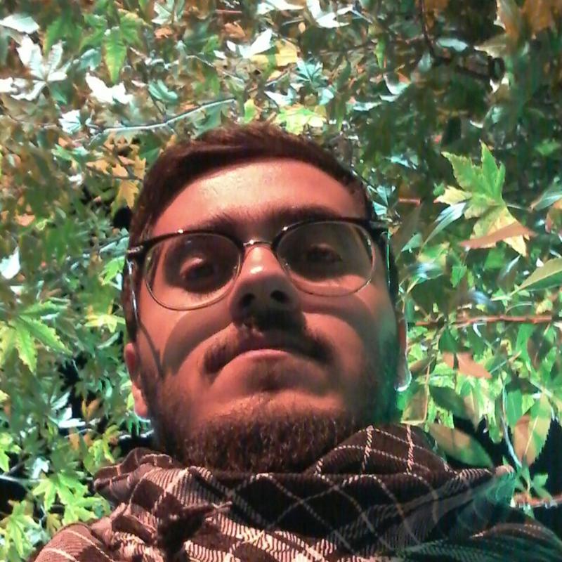 mohammadhossein.bayat_1377