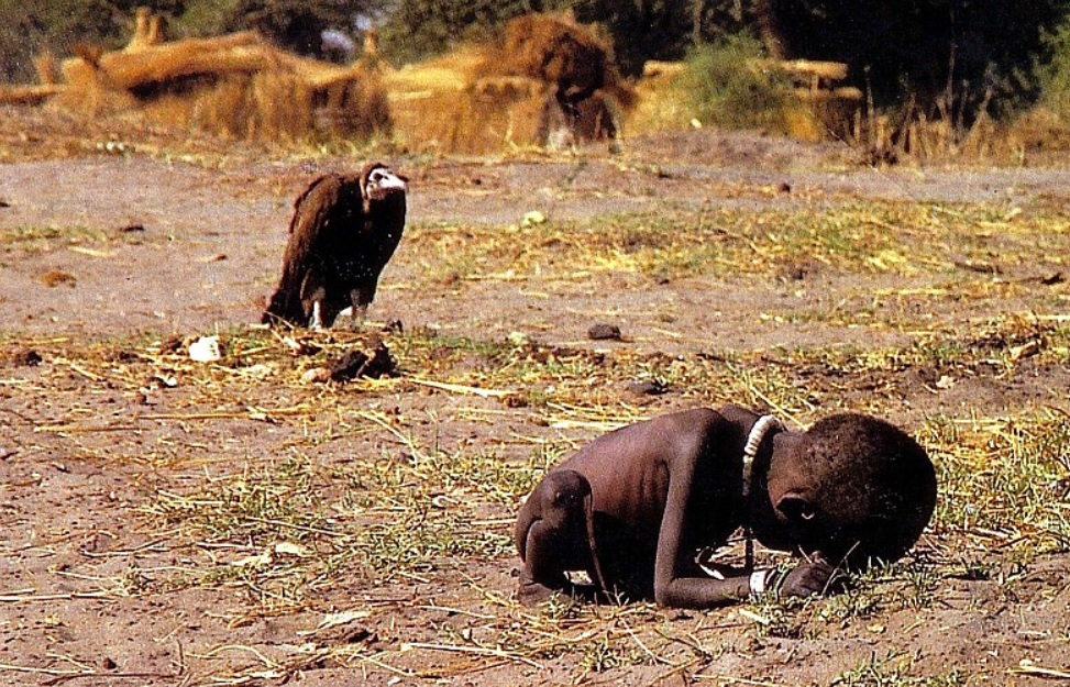 The vulture and the little girl ,Photograph by Kevin Carter