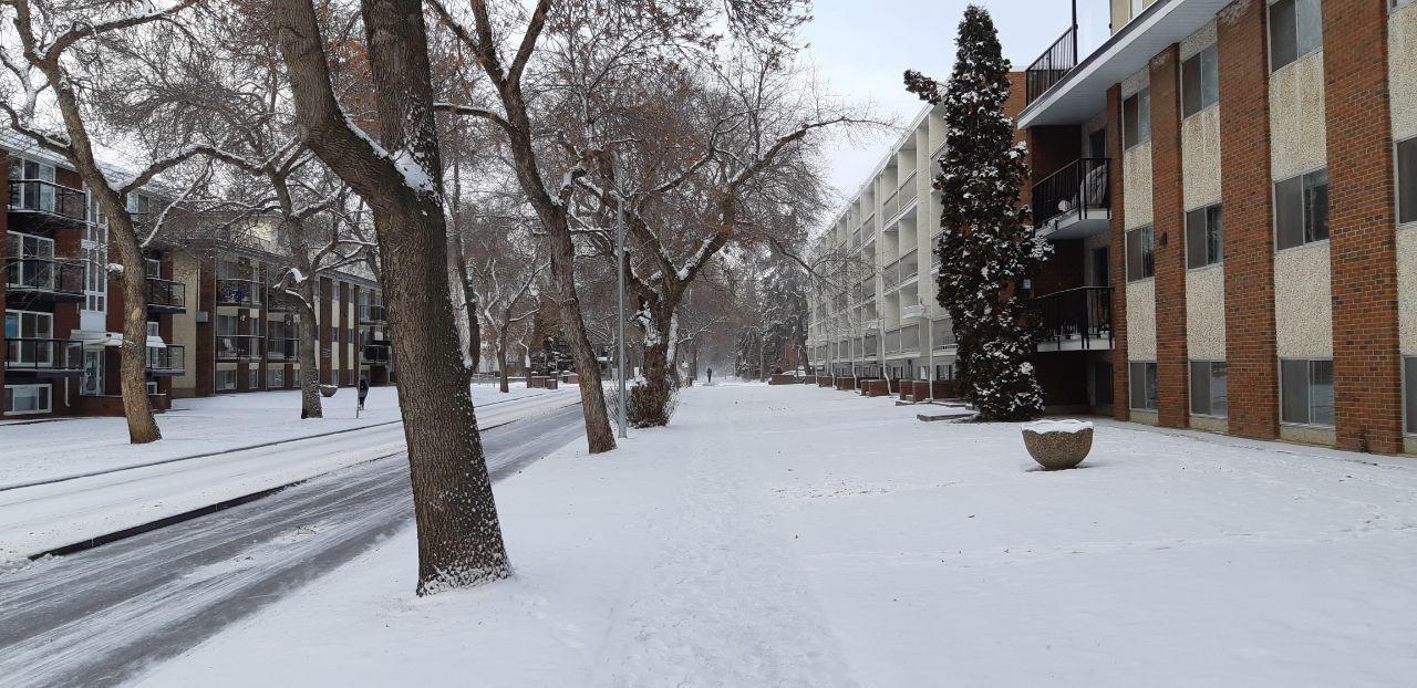 زمستان ادمونتون