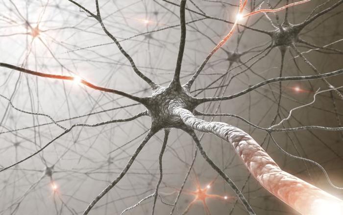 به افتخارِ بزرگترین مغزِ دنیا (از طرفِ یک نورونِ بیمقدار)