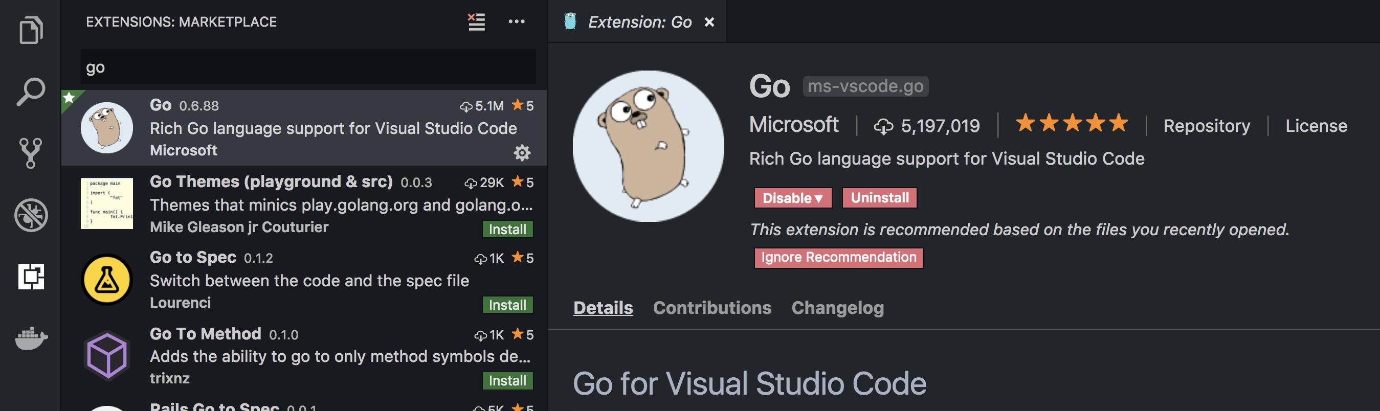 Golang Extension for VsCode
