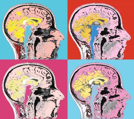 رابطه اثر و مخاطب از دریچه علوم اعصاب