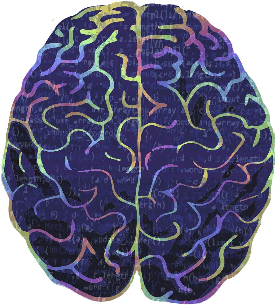 یادگیری ماشین قفل کتابخانه مغز انسان را باز میکند