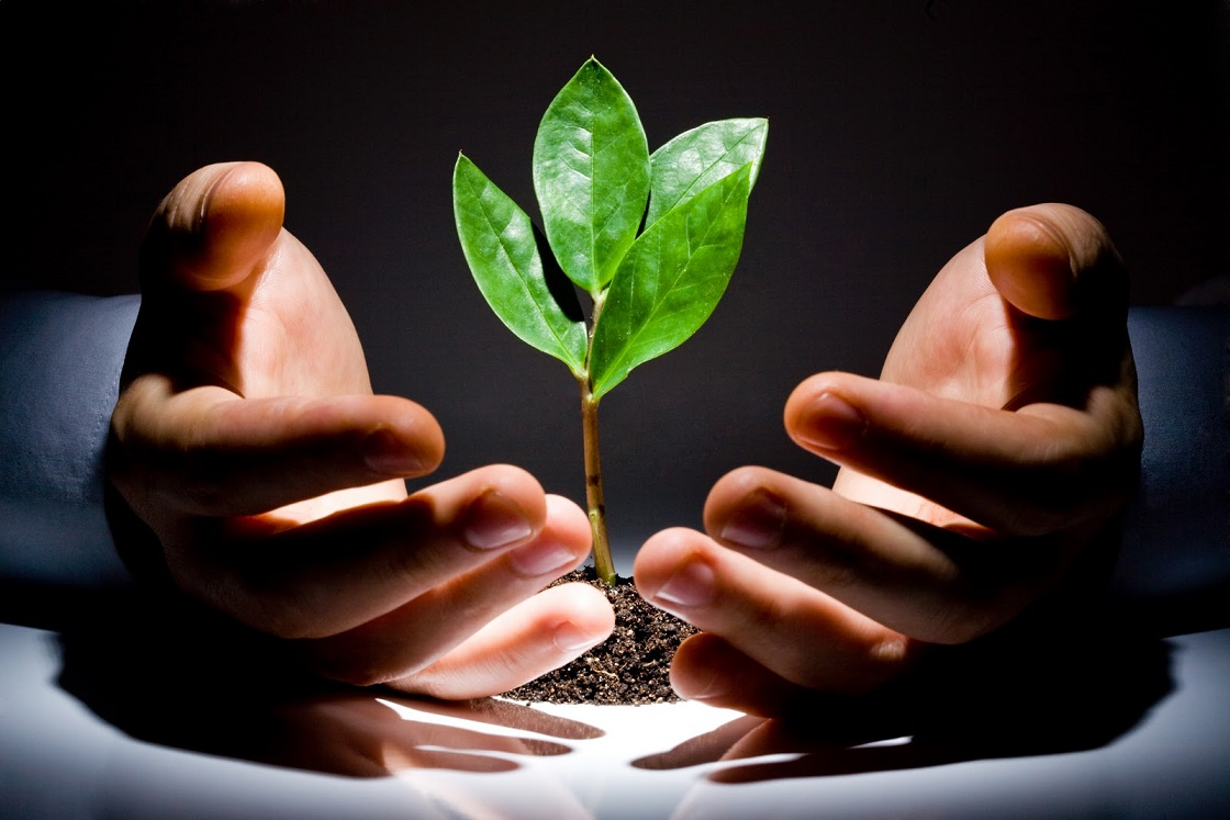 VC یا CVC ؟ کدام یک در اولویت جذب سرمایه قرار دارد؟