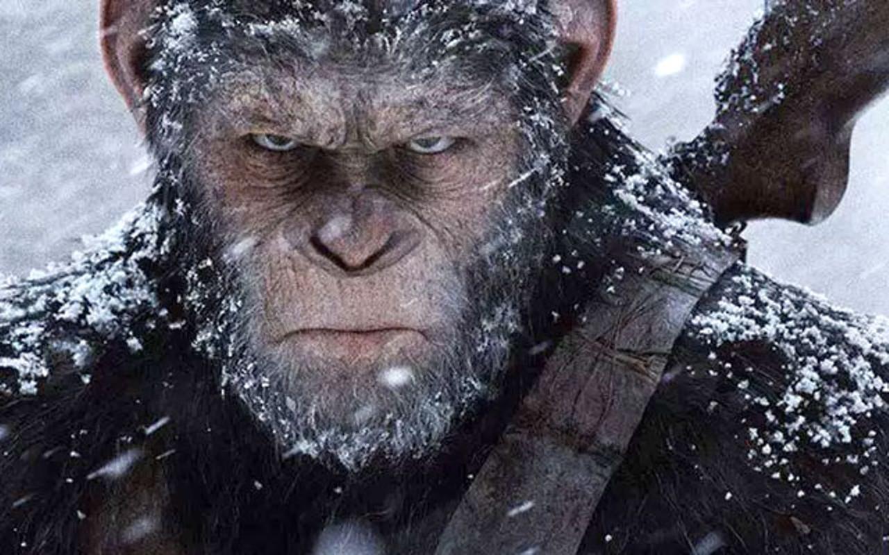 پس چرا الان میمونا آدم نمیشن؟