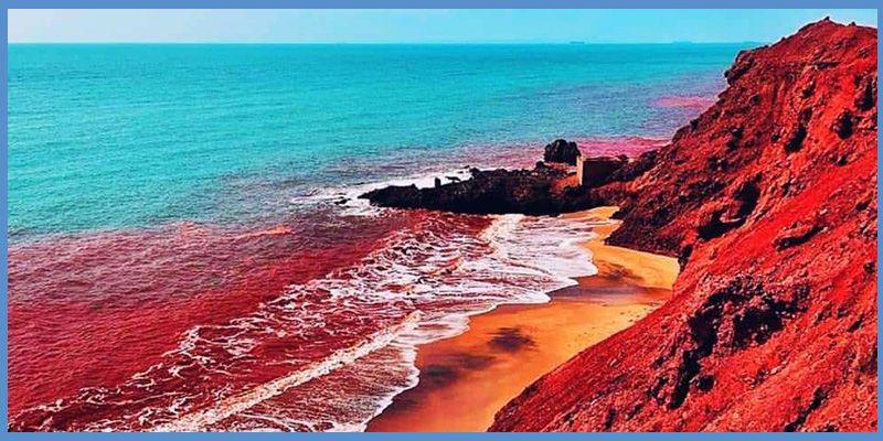 ساحل سرخ