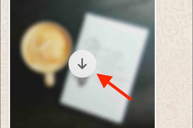 متوقف کردن دانلود اتوماتیک عکس در اپلیکیشن واتساپ