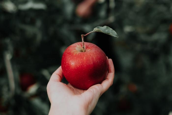 گاز زدن به سیب قرمز