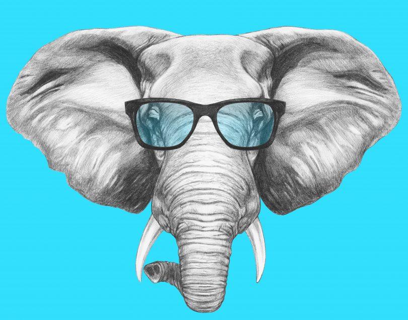 داستان فیل سفید ( داستان مدیریتی)
