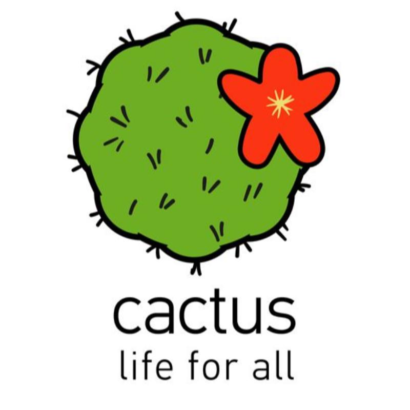 کاکتوس