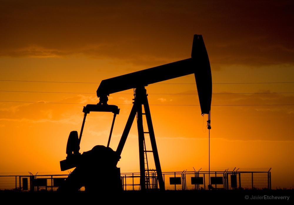 علم بهتر است یا نفت؟!؟