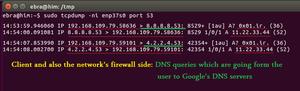 بدافزارها و DNS