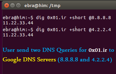کاربر دو DNS Query برای دامنهی 0x01.ir به سرورهای 8.8.8.8 و 4.2.2.4 که DNS Serverهای گوگل هستند ارسال میکند.