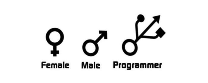 استخدام برنامه نویس خانم یا آقا ؟!