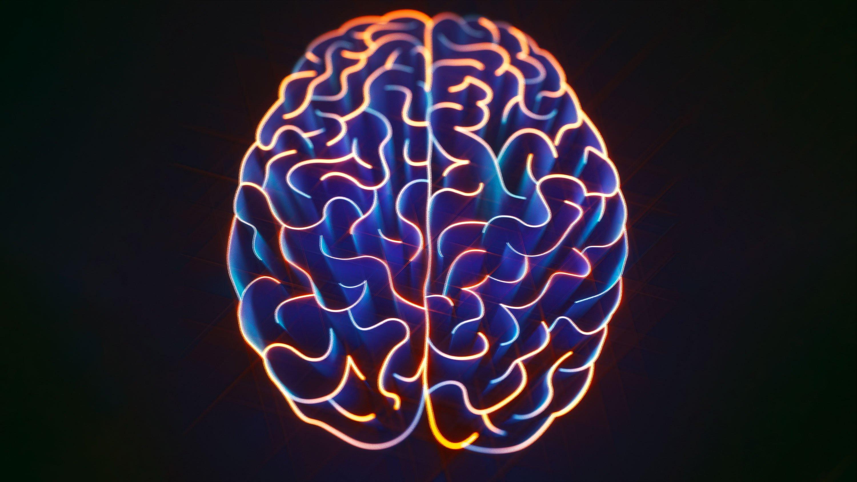 چگونه هر مطلبی را که دوست داریم به حافظه بسپاریم؟