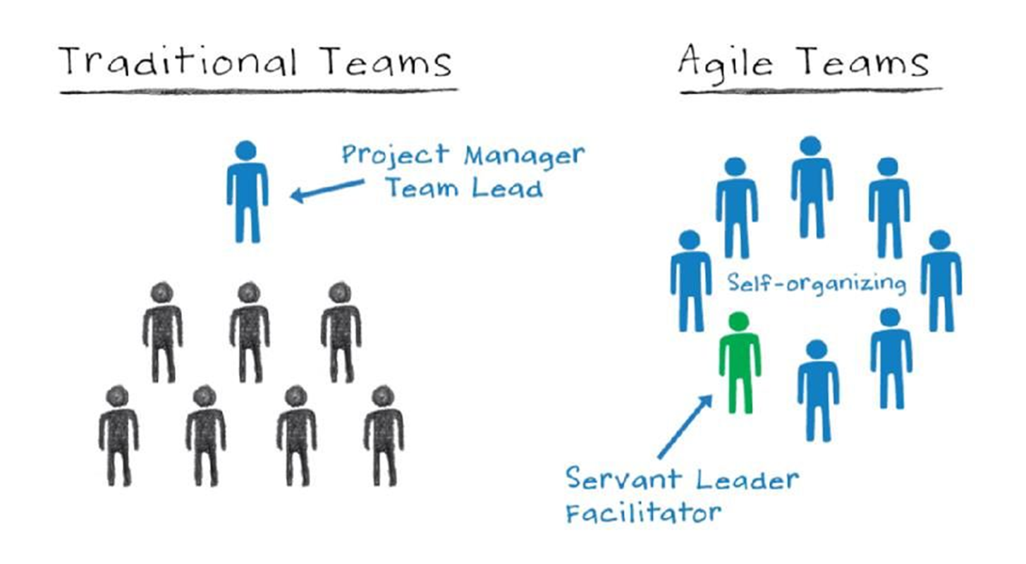سازمان چابک، مدیریت یا رهبری؟