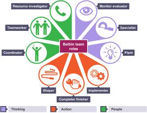 مدل بلبین و نقش افراد در تیم ها