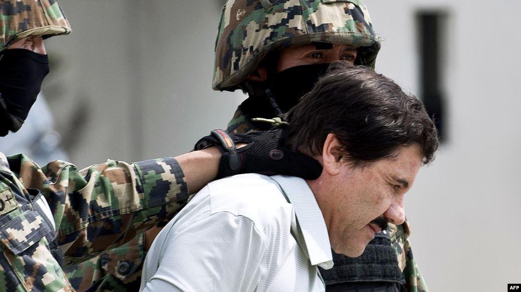 ال چاپو سلطان مواد مکزیک