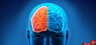تکنیکی برای فعال شدن دو نیمکره مغز
