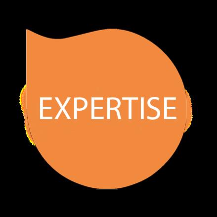 expertise- تخصص