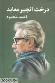 انجیر معابد  نوشته احمد محمود