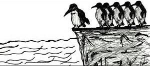پنگوئنها یکدیگر را به داخل آب هُل میدهند تا مطمئن شوند خطری وجود ندارد