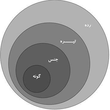 گونهها با هم یک جنس، جنسها با هم یک تیره و تیره ها با هم یک رده را تشکیل میدهند.