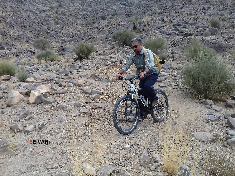 دوچرخه سواری در کوهستان Mountain biking