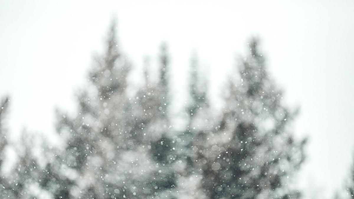سفید برفی