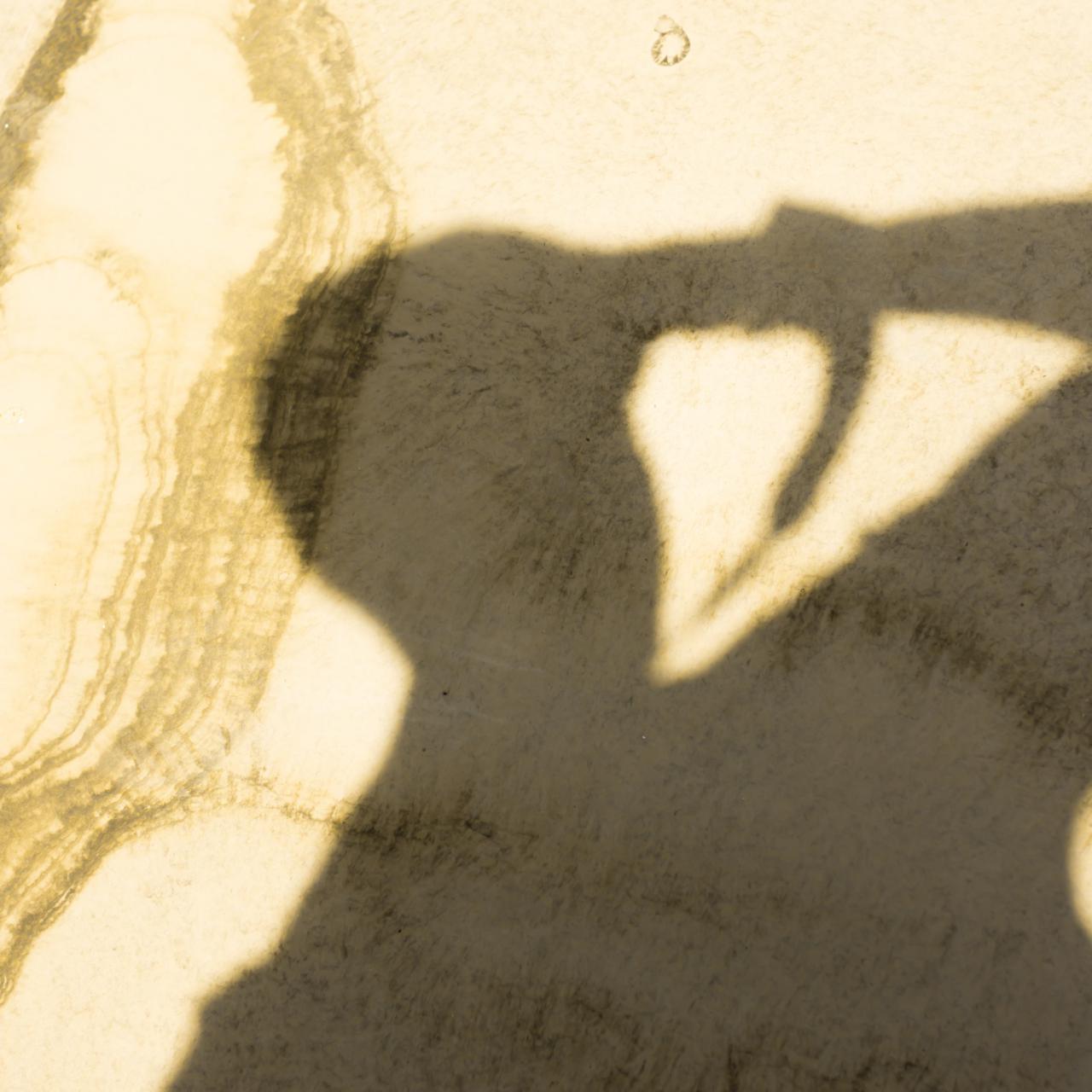 سایه محمدرضا صادقی ملقب به رضاصاد روی زمین در حال عکاسی
