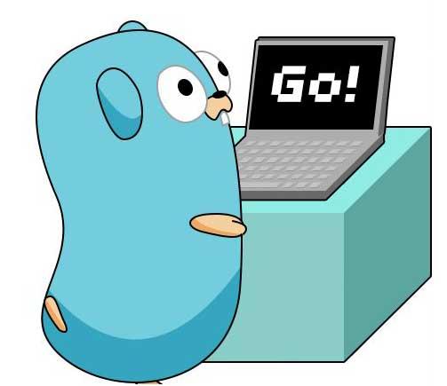 از چه راهی میشه زبان برنامه نویس Go رو یاد گرفت؟