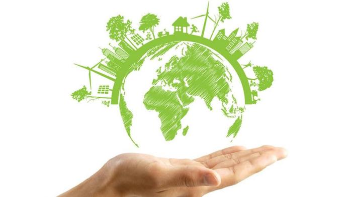 بازاریابی سبز چیست و برای چه کسانی مناسب است؟