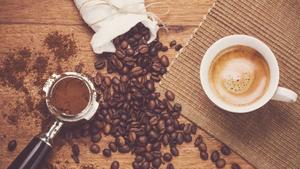 عوامل تهیه یک قهوه خوب