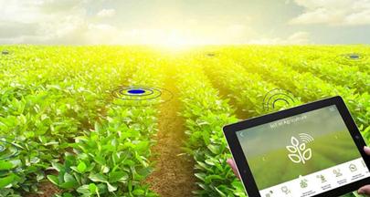 کاهش مصرف آب در بخش کشاورزی با آبیاری هوشمند