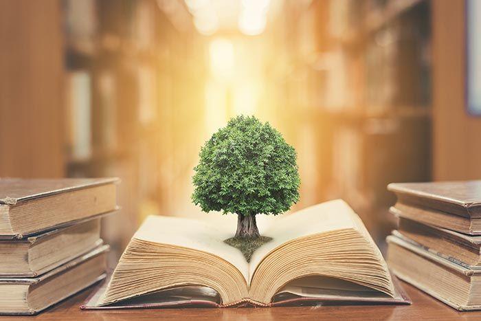 چرا کتابها زندگی ما را متحول نمیکنند؟؟