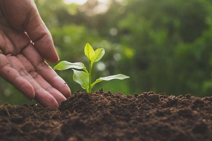 شناخت نیازهای خاک مزرعه با تکنولوژی BECROP