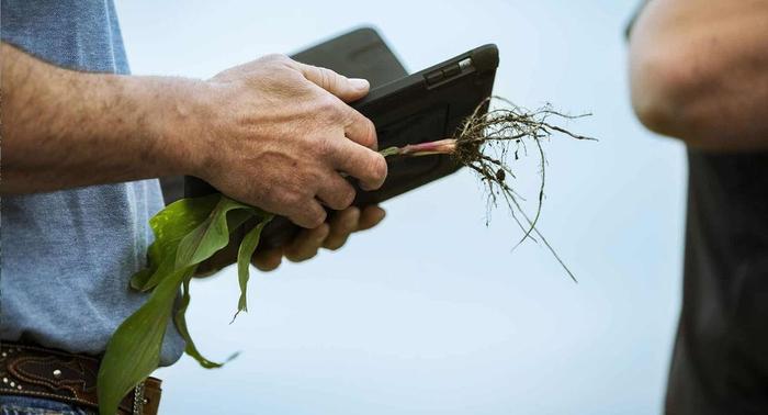 اولویتبندی امور مزرعه، پایش سود و پیشبینی درآمد با Granular