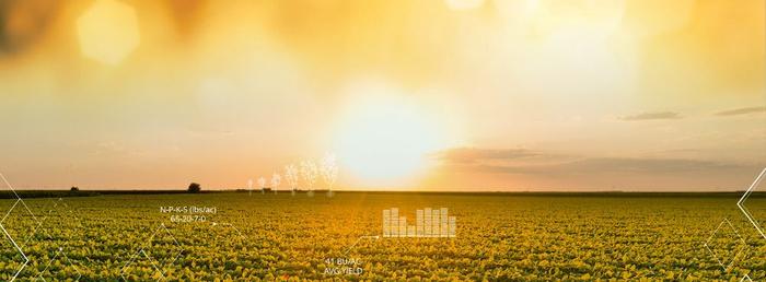 استارتاپ Farmer's Edge؛ ارائه دهنده نرمافزار و سختافزارهای کشاورزی دادهمحور