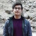 محمد حسین مروجی