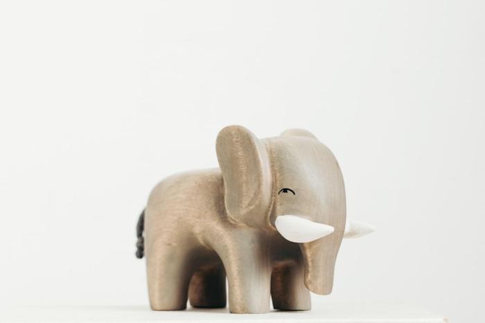 فیل هوا کردن - راهاندازی کسب و کار اینترنتی با بودجه پایین