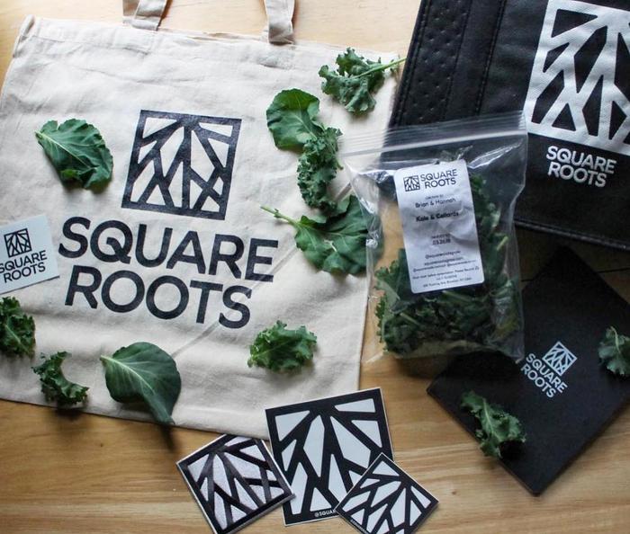 """داستان شرکت """"Square Roots"""" تولید کننده غذای واقعی و محلی"""