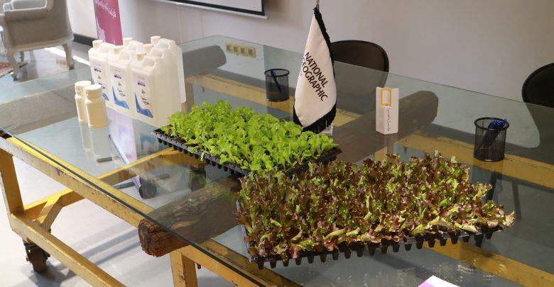 برگزاری اولین کنفرانس پروژه مزارع ایران