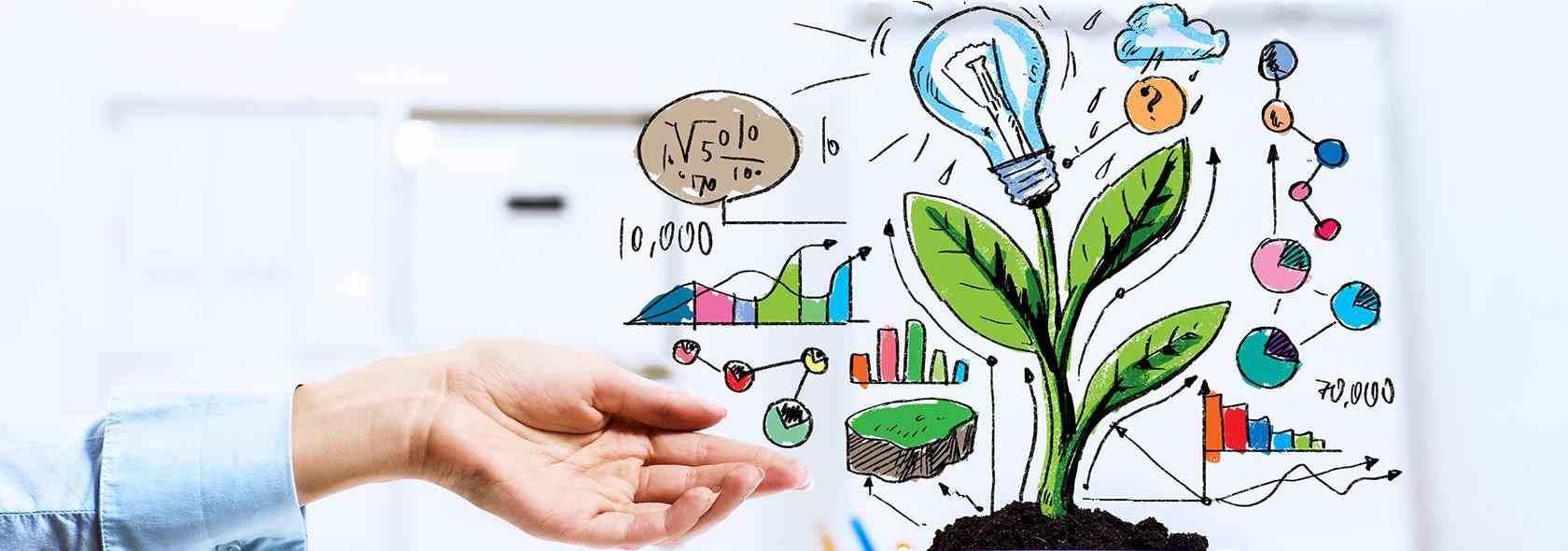 سرمایهگذاری Green Field در مقابل سرمایهگذاری Brown Field؟