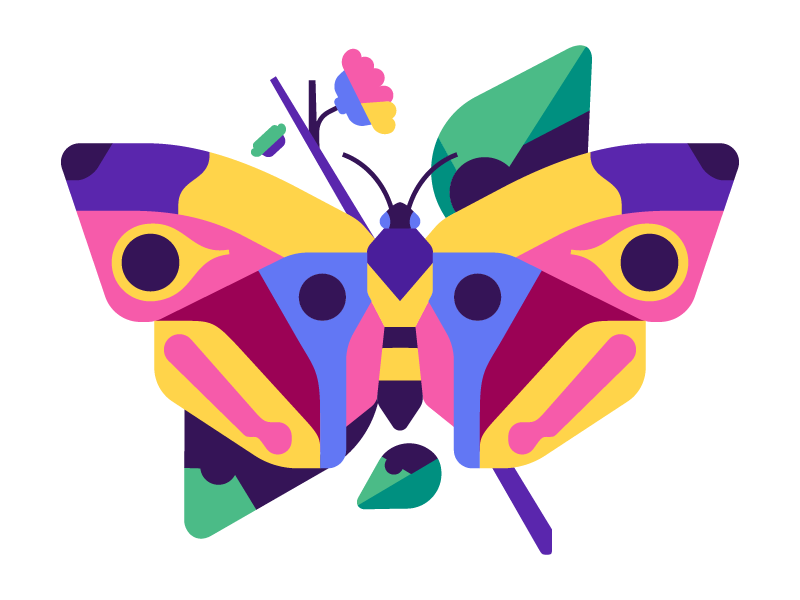 چگونه پروانه شاعرانه نباشیم؟