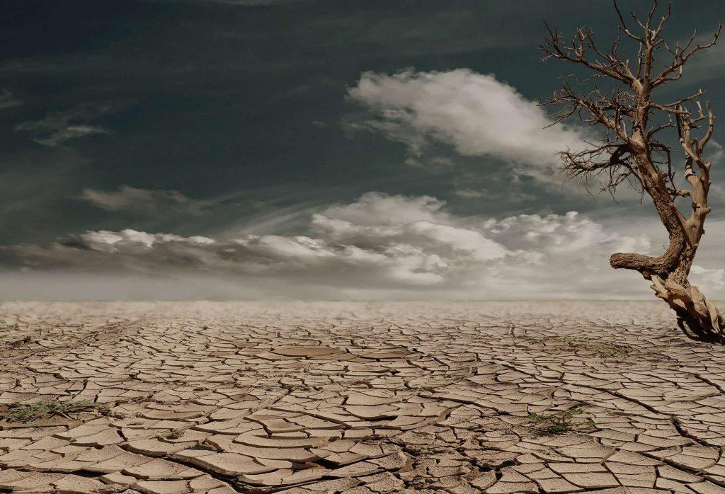 خشکسالی / اتیوپی