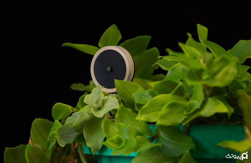 استفاده از تکنولوژی برای آبیاری گیاهان آپارتمانی