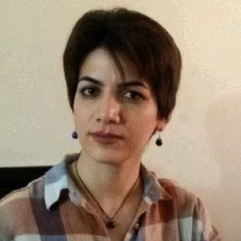 Sheyda Hosseinzadeh